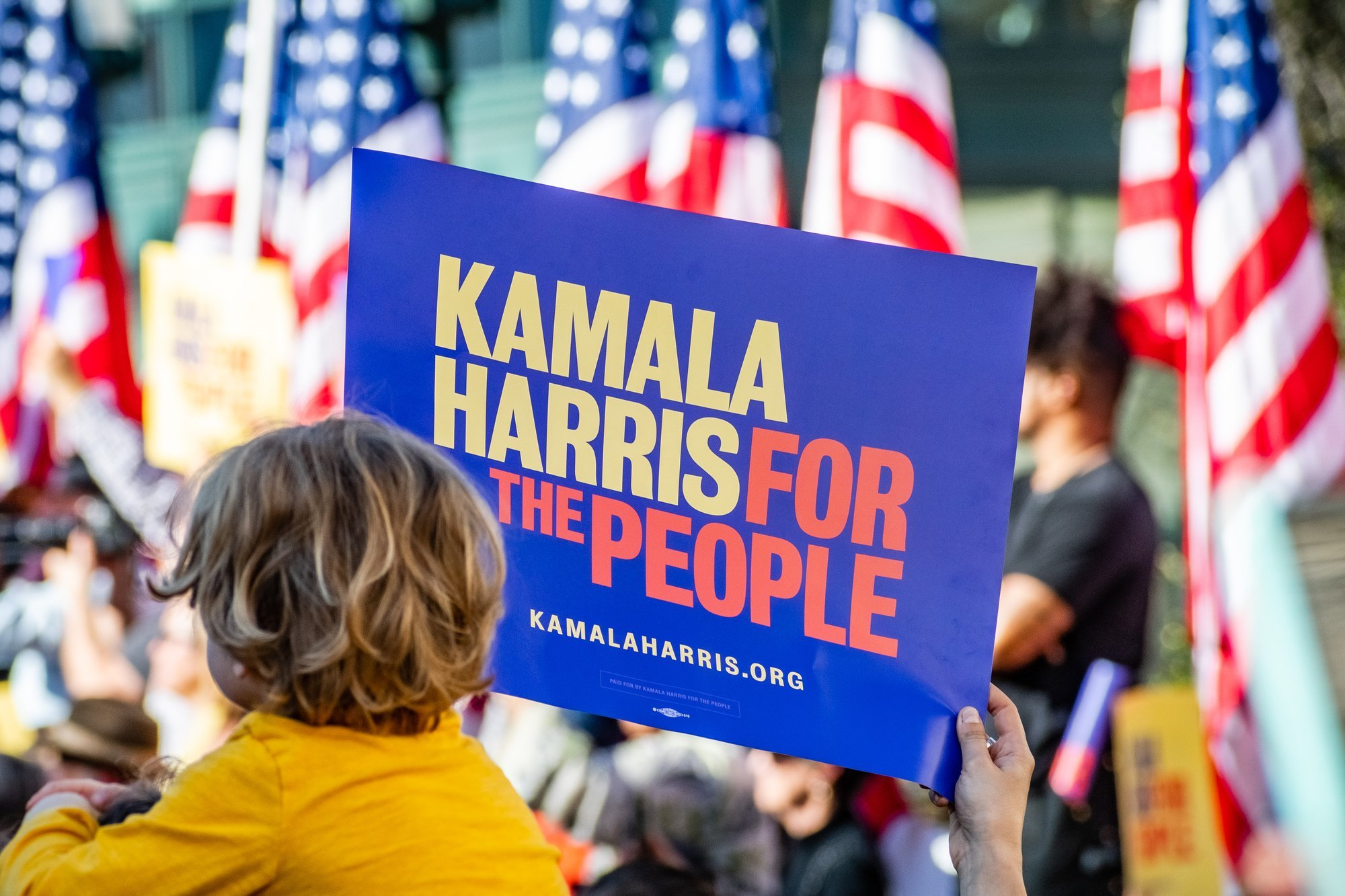 Kamala Harris credit score bureau agency invisible unscorable president 2020